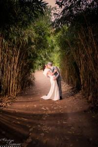 More wedding magic