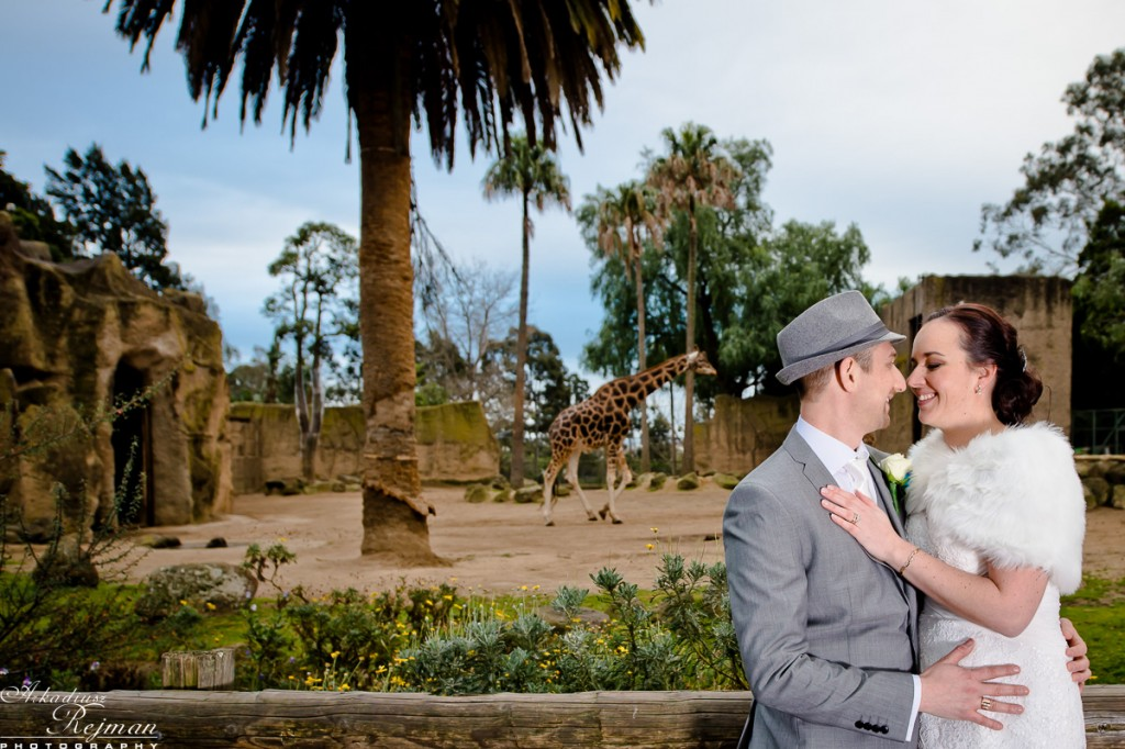 Melbourne ZOO wedding