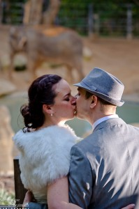 Wedding Safari kiss